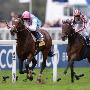 Frankel and Tom Queally win the Champion Stakes at Ascot