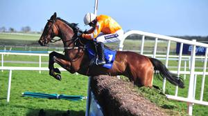 Twinlight is part of Willie Mullins' Punchestown squad