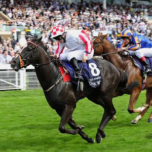 Sole Power wins the Nunthorpe