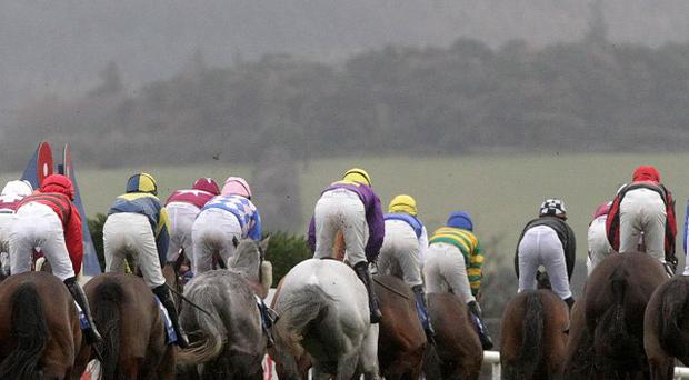 A new online channel covering Irish racing has been launched