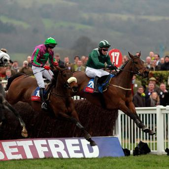 Salsify (right) wins at Cheltenham