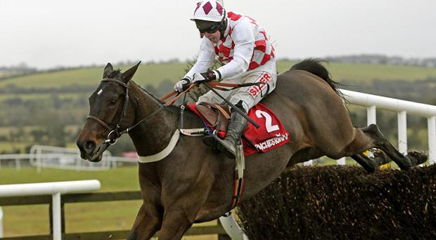 Flemenstar is likely to be fitted with earplugs at Leopardstown