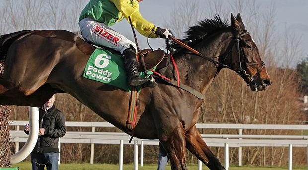 Sizing Europe will not run in the Gold Cup