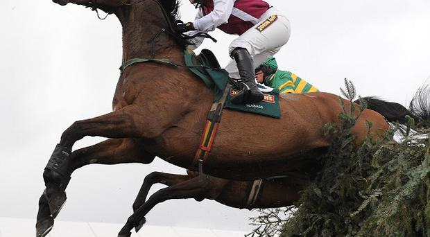 Seabass and Katie Walsh clear the last in the Grand National