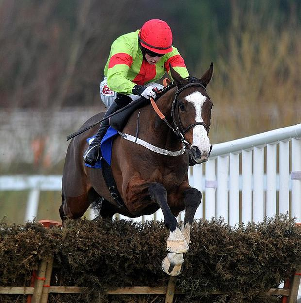 Dessie Hughes has backed Our Conor to win the JCB Triumph Hurdle