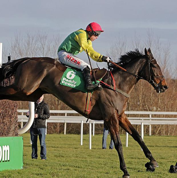 Henry de Bromhead is ensure of Sizing Europe's Cheltenham aims
