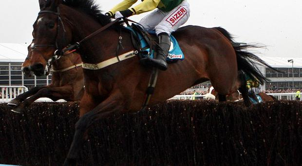 Sizing Europe has been left in the Queen Mother Champion Chase