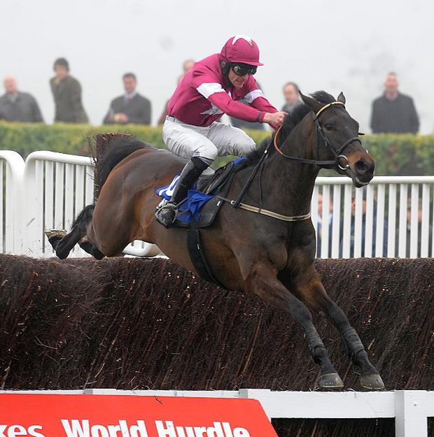 Sir Des Champs is Ireland's leading hope in the Cheltenham Gold Cup