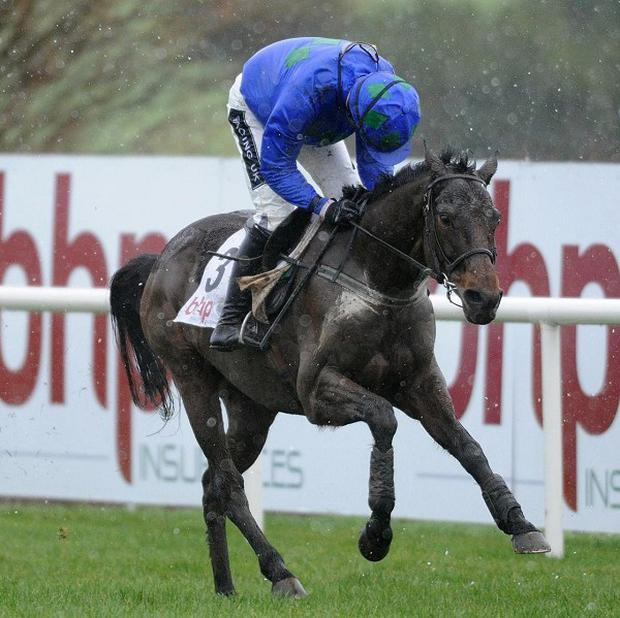 Ruby Walsh is puzzled by negativity surrounding Hurricane Fly