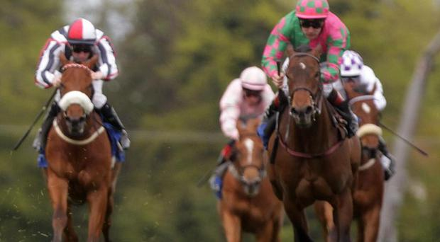 The meeting at Leopardstown on Wednesday has been called off