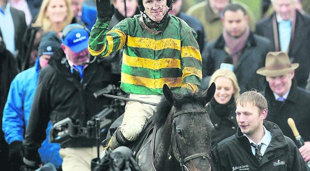 At Fishers Cross with jockey Tony McCoy after winning The Albert Bartlett Novices' Hurdle Race during the Cheltenham Gold Cup Day on Day Four of the 2013 Cheltenham Festival at Cheltenham Racecourse, Gloucestershire
