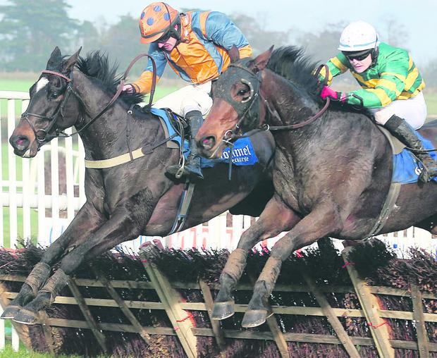 Ruby Walsh on Quietly Fancied