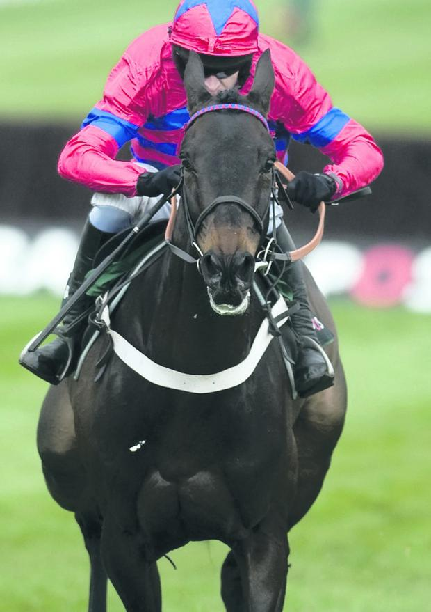 CHELTENHAM, ENGLAND - MARCH 13: Barry Geraghty riding Sprinter Sacre (L) win The Racing Post Arkle Challenge Trophy Steeple Chase at Cheltenham racecourse on March 13, 2012 in Cheltenham, England. (Photo by Alan Crowhurst/Getty Images)