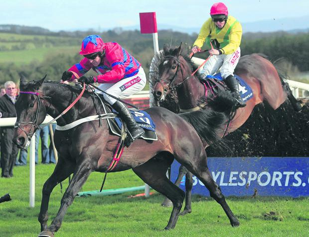 Sprinter Sacre ridden by Barry Geraghty (left) races clear over Sizing Europe under Andrew Lynch at the Boylesports.Com Champion Chase during the Boylesports Day at the 2013 Festival at Punchestown Racecourse, Co Kildare