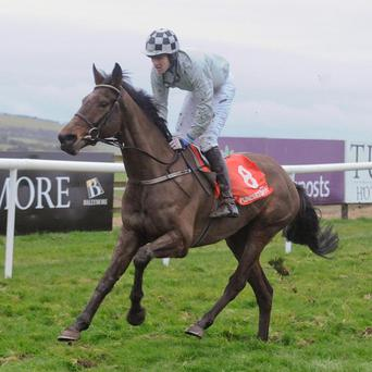 Morning Assembly held off Inish Island in the Irish Daily Mirror Novice Hurdle