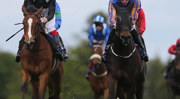 Just Pretending (blinkers) hangs on at Leopardstown