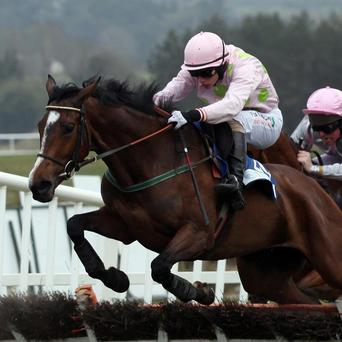 Tarla made all of the running in the Irish Stallion Farms EBF Mares Chase