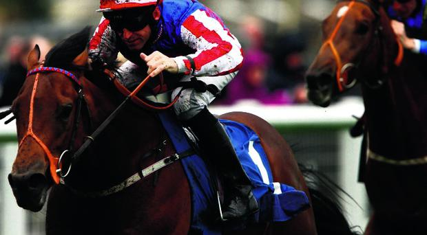 Fort Knox can give Johnny Murtagh great start to his training career by winning Irish 2000 Guineas at the Curragh