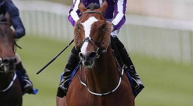 Leading Light, ridden by Joseph O'Brien, wins the Gallinule Stakes at the Curragh