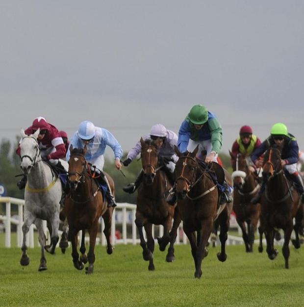 Racing at Fairyhouse