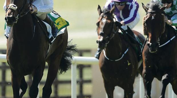 Trading Leather (left) wins at Curragh Racecourse
