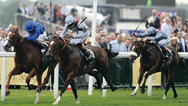 ASCOT, ENGLAND - JUNE 18: (L-R) Kevin J Manning riding Dawn Approach lands the St James's Palace Stakes ahead of second placed Richard Hughes riding Toronado during day one of Royal Ascot at Ascot Racecourse on June 18, 2013 in Ascot, England. (Photo by Charlie Crowhurst/Getty Images for Ascot Racecourse)