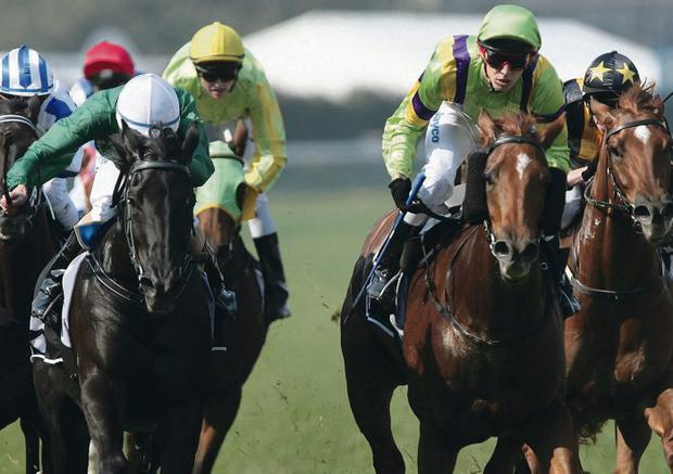 MELBOURNE, AUSTRALIA - APRIL 19 Chris Symons riding Joyeuse (2nd R) wins Race 3 Flying Spur Cup during the Pink Ribbon Cup day meeting at Caulfield Race Course, on April 19, 2008 in Melbourne, Australia. (Photo by Robert Prezioso/Getty Images)
