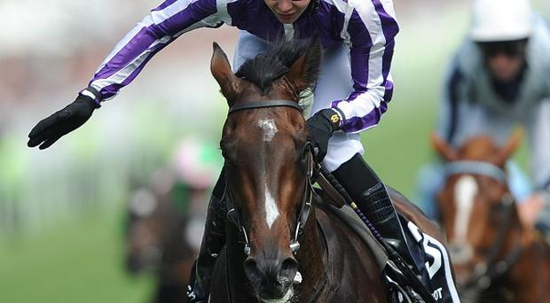 Camelot suffered a severe bout of colic during the winter