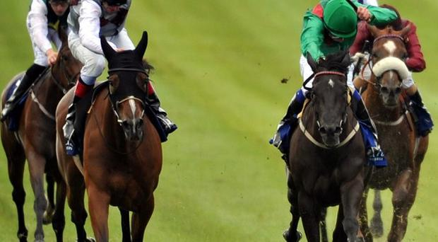 Ambivalent (left) runs on strongly to take the Pretty Polly
