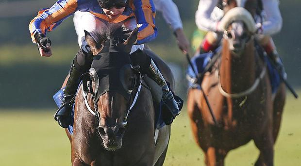 Wonderfully lands the Silver Flash at Leopardstown