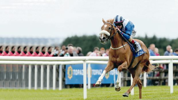Ahead of the field: Pat Smullen rides Tarfasha to victory at Galway