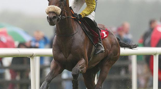 Blackmail, ridden by Rudy Walsh, wins the opening race at Galway