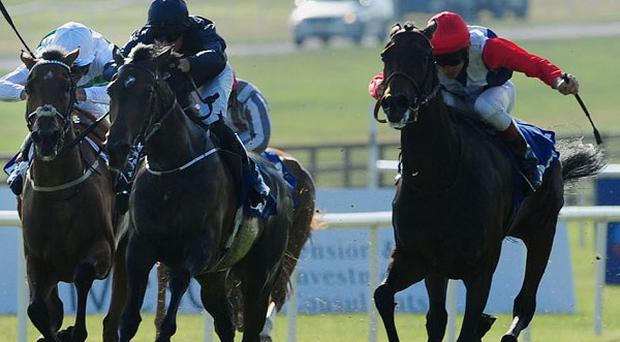 Venus De Milo fights it out with Chicquita (right) in the Irish Oaks
