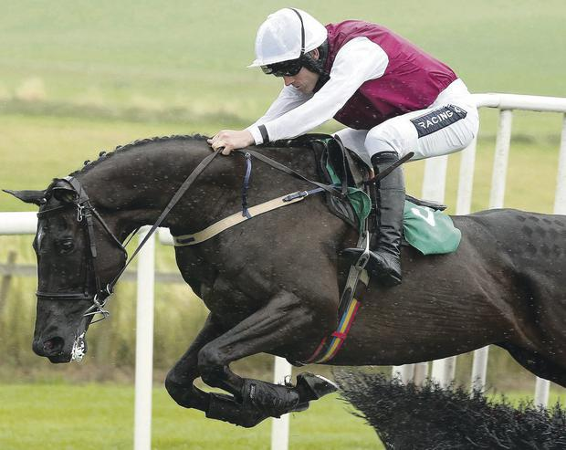 Flying high: Top jockey Ruby Walsh rides Un Beau Roman to victory in the Sunday Hospitality Hurdle at Downpatrick