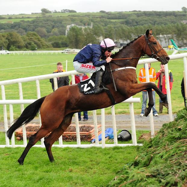 Kerry National hero White Star Line soars over the last at Listowel