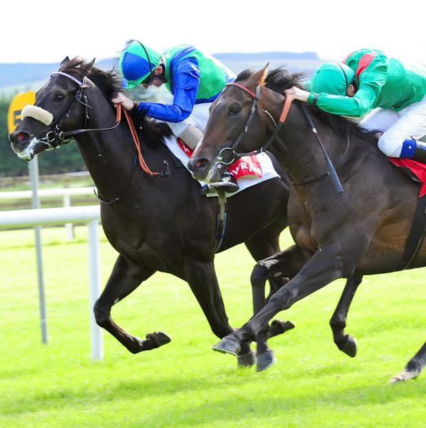 Mandatario (left) wins at Gowran