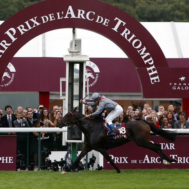 Treve crosses the finish line to win the Qatar Prix de l'Arc de Triomphe (AP)