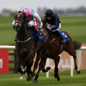 Flying Jib, left, races clear of Dazzling at The Curragh