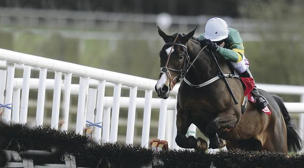Jezki could carry Tony McCoy closer to 4,000 winners at Down Royal on Friday