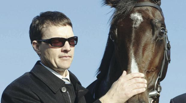 Aidan O'Brien has great chance with Declaration Of War