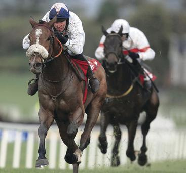 Banbridge jockey Stephen Clements pilots Moonshine Lad to victory at Down Royal on Saturday