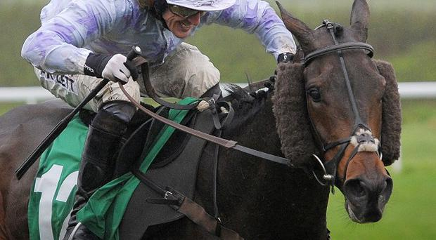 Tony McCoy riding Minella for Steak as they go on to win the NFU Mutual Supports RABI Handicap Hurdle Race at Chepstow Racecourse, Monmouthshire.