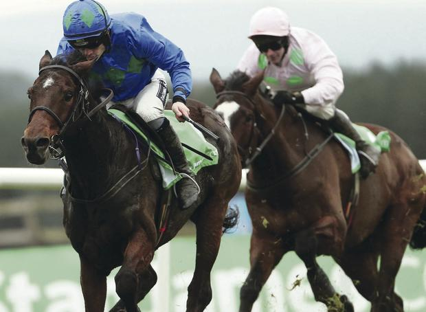 Flying high: Ulster-owned Hurricane Fly powers to victory in the Morgiana Hurdle at Punchestown