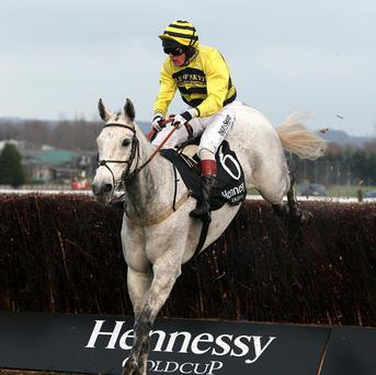 Silver by Nature will carry joint top-weight in the Paddy Power Chase