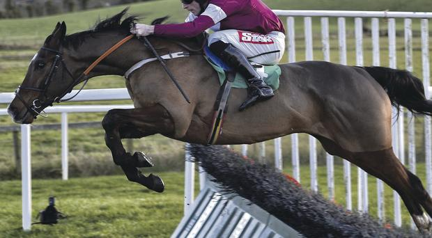 Top jockey Davy Russell rides Arnaud – one of four successful Belfast Telegraph tips – to victory in the Customer Care Christmas Hurdle at Downpatrick's big festive meeting yesterday