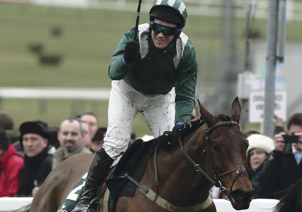 We've done it: Colm Sweeney celebrates on Salsify after winning Foxhunters Chase at the Cheltenham Festival