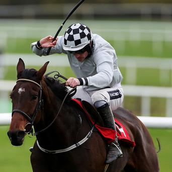 Morning Assembly will run in the Topaz Novice Chase on Sunday