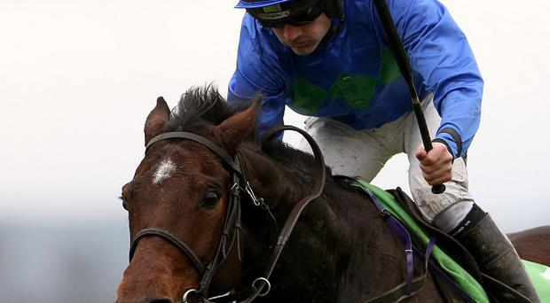 Hurricane Fly won his 18th Grade One race at Leopardstown