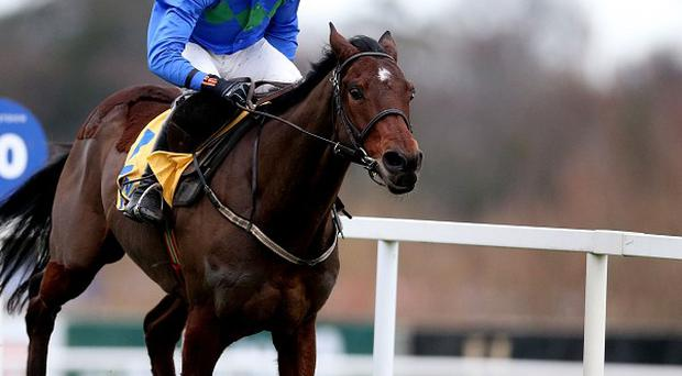 Hurricane Fly is looking for his fourth victory in the Irish Champion Hurdle