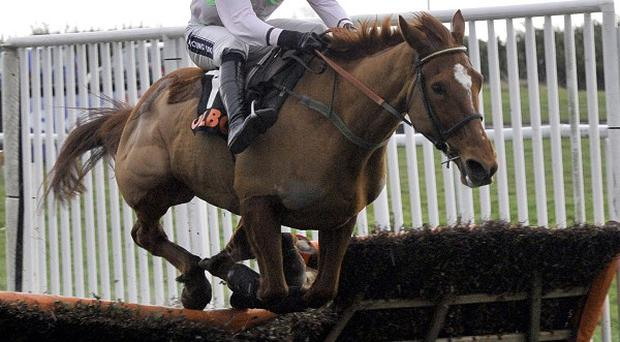 Annie Power clears the final obstacle in the OLBG.com Mares' Hurdle at Doncaster